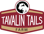 Tavalin Tails - Registered Katahdin Hair Sheep -  Breed Stock for sale - Local Meat CSA
